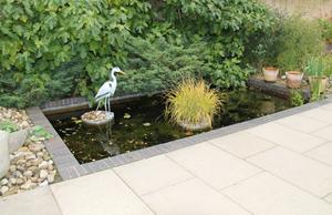Soothing Virginia water garden